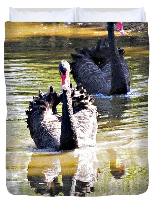 Black Swan Duvet Cover featuring the photograph Black Swan 1 by Walter Herrit