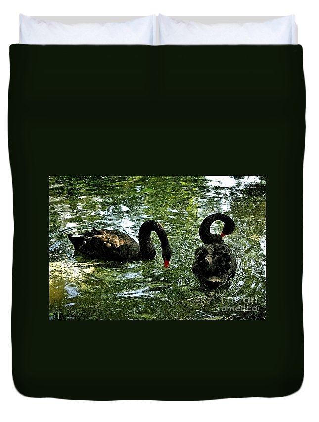 Swan Duvet Cover featuring the photograph Black Swan Ballet by Bosko Martinovic