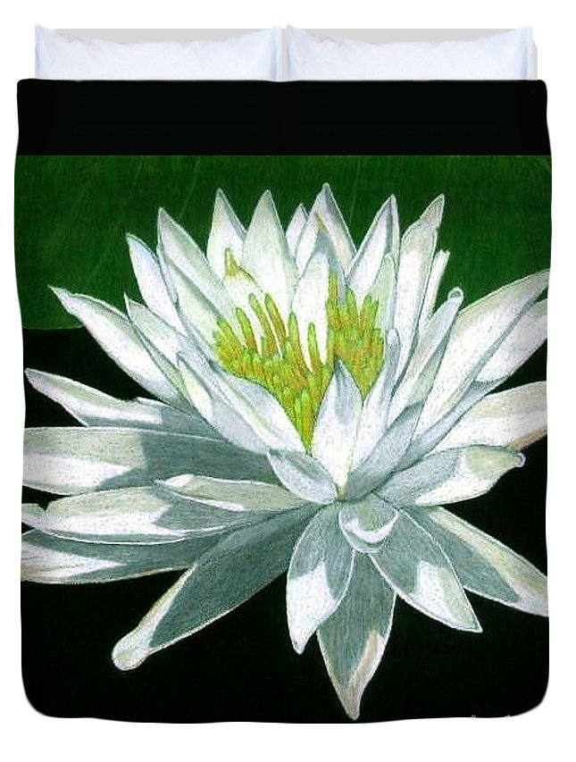 Lily Duvet Cover featuring the drawing Black Water Beauty by Anita Putman