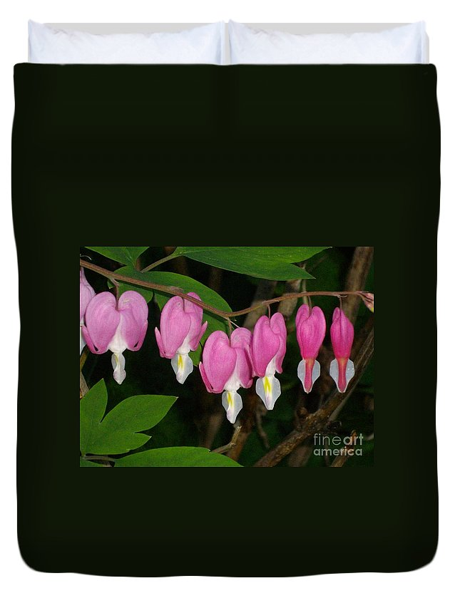Flower Duvet Cover featuring the photograph Bleeding Hearts by H Cooper