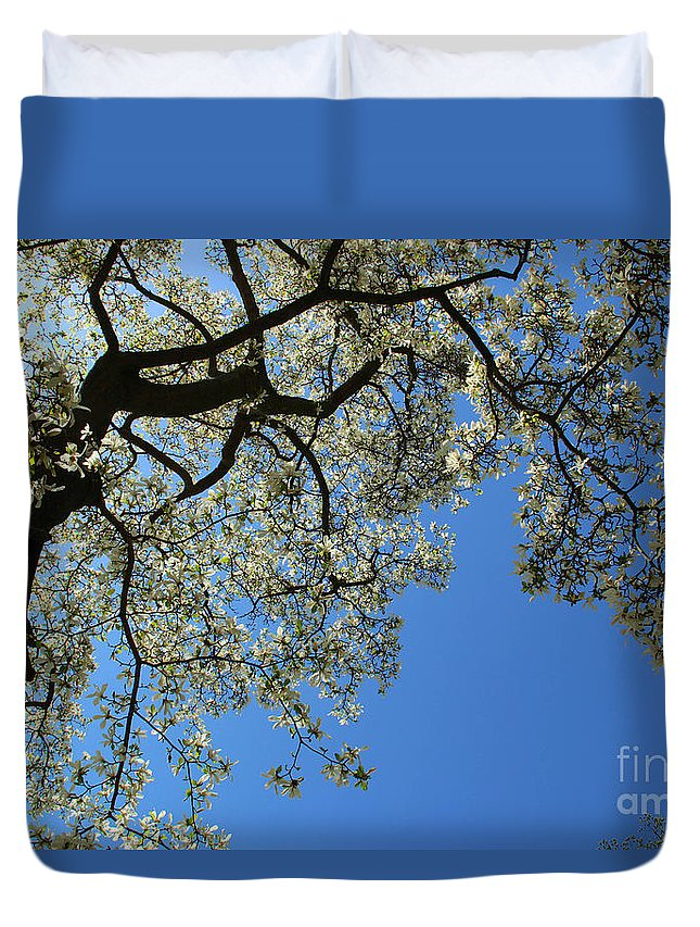 Magnolia Duvet Cover featuring the photograph Blossoming White Magnolia Tree Against Blue Sky by Kerstin Ivarsson