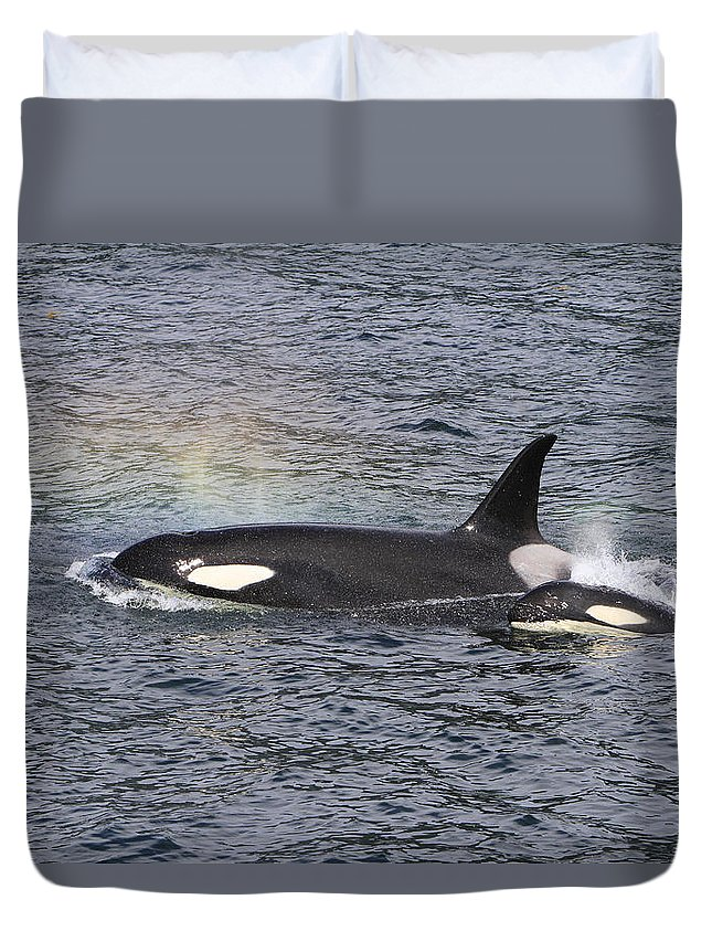 Orca Duvet Cover featuring the photograph Blowing Rainbows by Shoal Hollingsworth