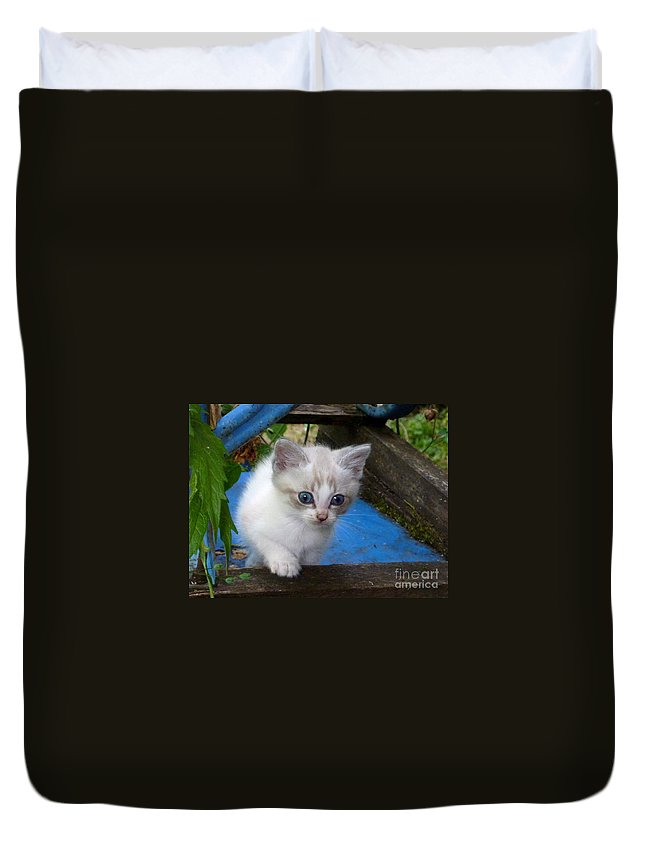 Cute Duvet Cover featuring the photograph Blue Boy by Rain Shine