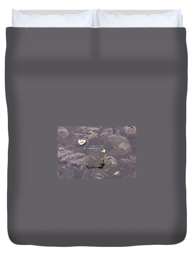 Belmont Lake State Park Duvet Cover featuring the photograph Blue Damselfly by Karen Silvestri