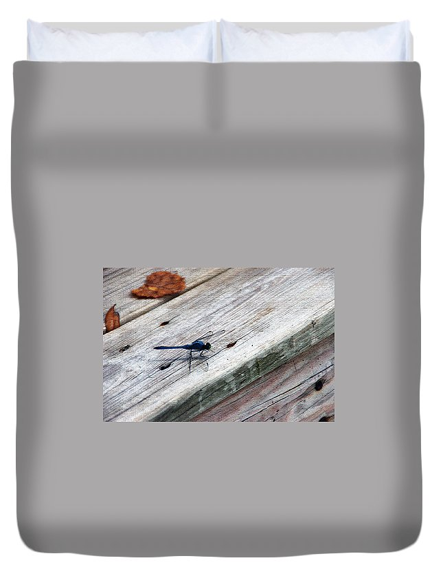 Dragonfly Duvet Cover featuring the photograph Blue Dragonfly by Aimee L Maher ALM GALLERY