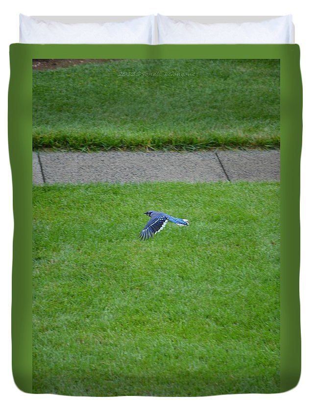 Jaybird Duvet Cover featuring the photograph Blue Flight by Sonali Gangane