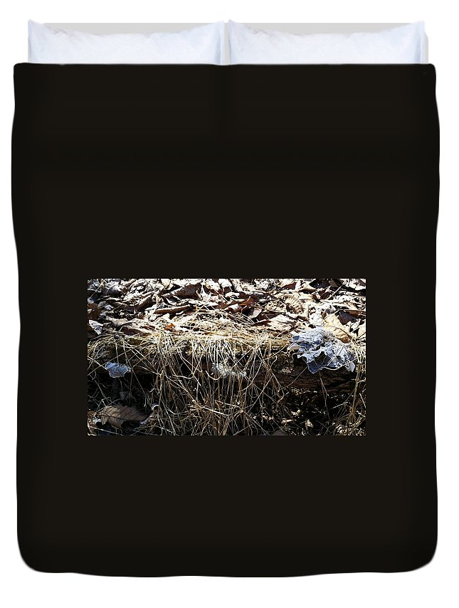 Landscape Duvet Cover featuring the photograph Blue Fungi by Mark Victors