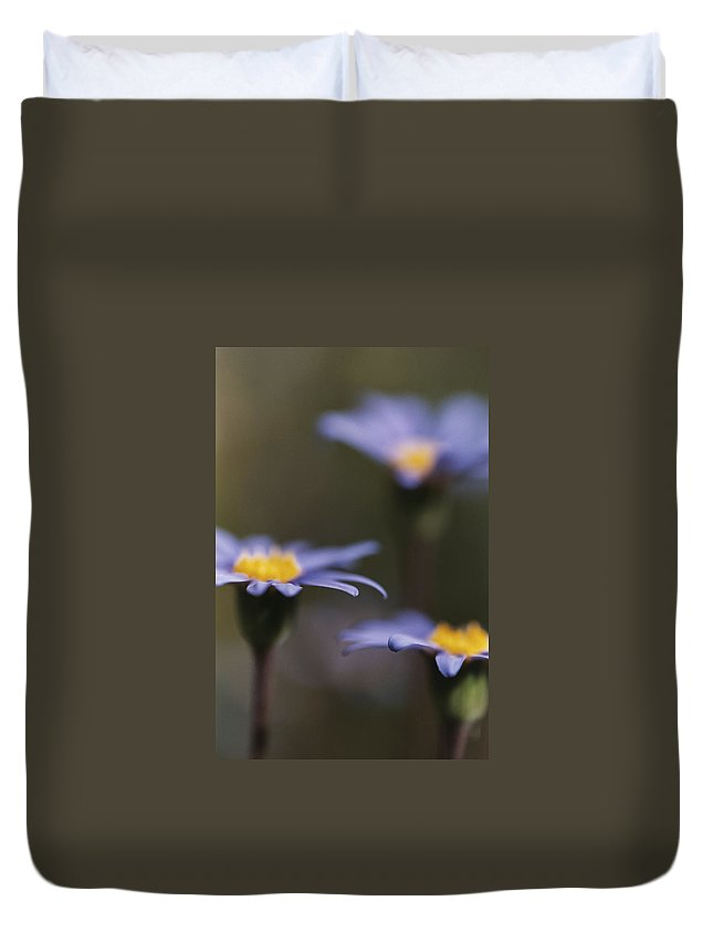 Felicia Duvet Cover featuring the photograph Blue Haze by Caitlyn Grasso