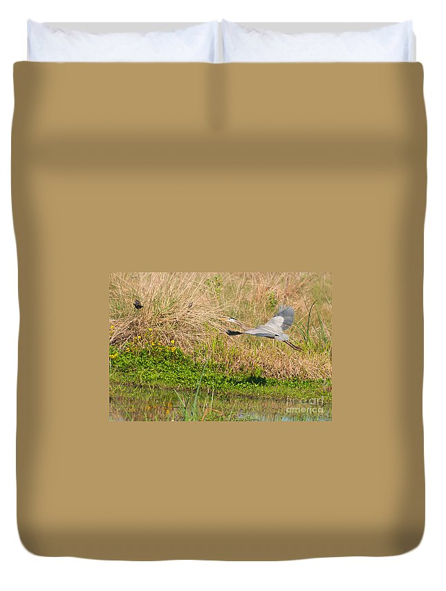 Great Duvet Cover featuring the photograph Blue Heron And The Black Bird by Photos By Cassandra