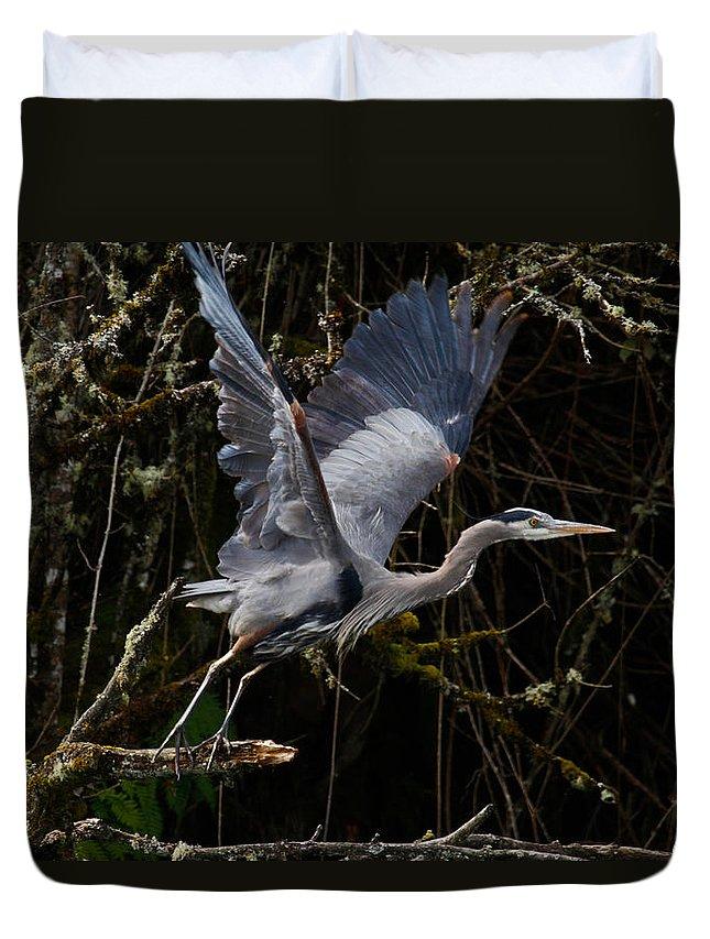 Blue Heron Duvet Cover featuring the photograph Blue Heron Lift Off by Steve McKinzie