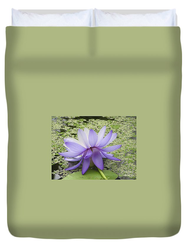 Lotus Duvet Cover featuring the photograph Blue Lotus Seen From Behind by Kerstin Ivarsson