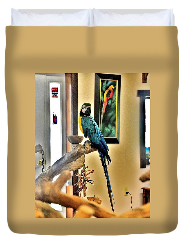 Bird Duvet Cover featuring the photograph On The Perch by Kim Bemis