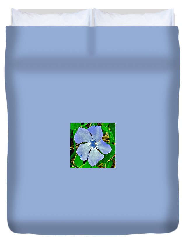 Blue Periwinkle In Rocca Al Mare Open Air Museum Duvet Cover featuring the photograph Blue Periwinkle In Rocca Al Mare Open Air Museum-estonia by Ruth Hager