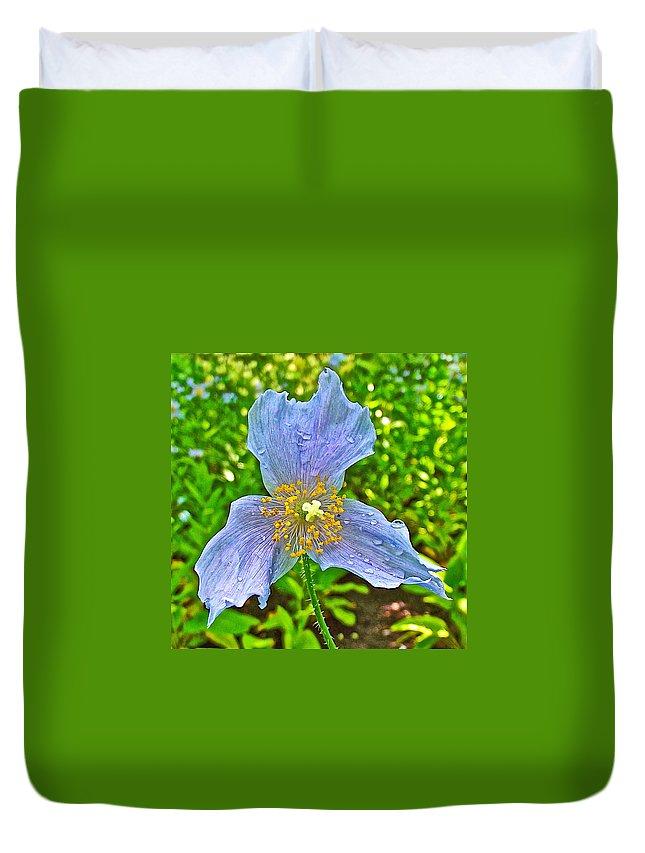 Blue Poppy In Les Jardins De Metis Or Reford Gardens Near Grand-metis-quebec Duvet Cover featuring the photograph Blue Poppy In Les Jardins De Metis Or Reford Gardens Near Grand-metis-quebec by Ruth Hager