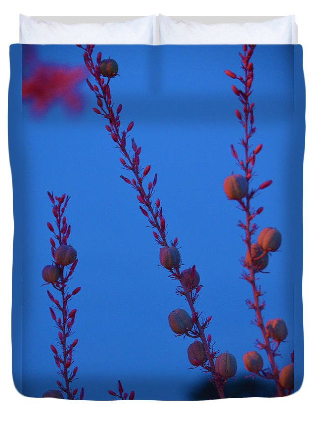 Blue Duvet Cover featuring the photograph Blue Sky Flowers At Night by Deprise Brescia