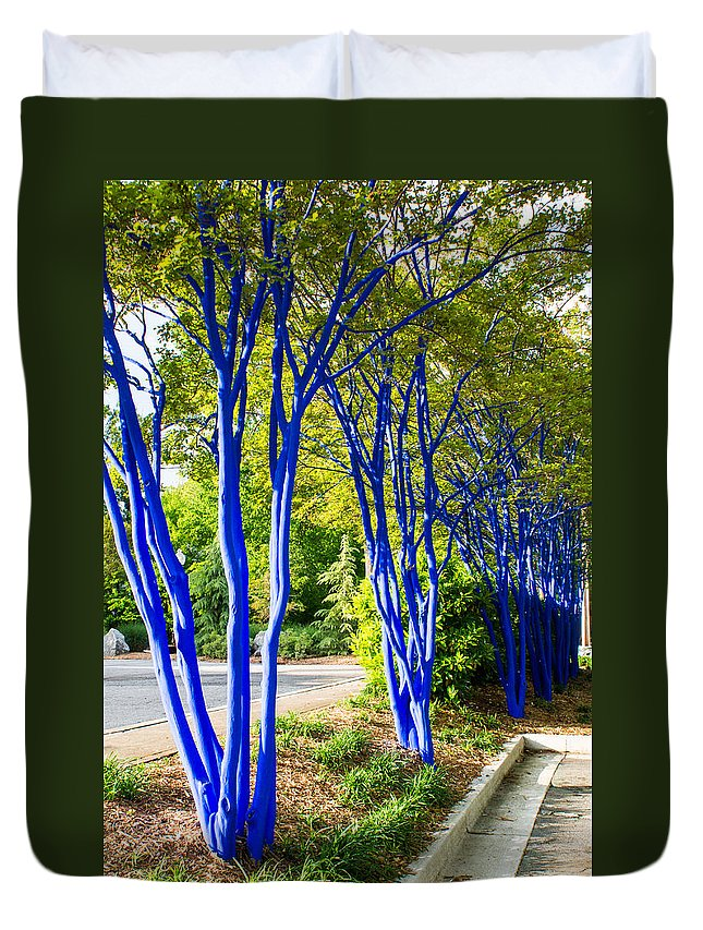 Blue Duvet Cover featuring the photograph Blue Trunked Trees 2 by Douglas Barnett