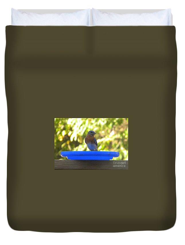 Bluebird Duvet Cover featuring the photograph Bluebird Frisbee by Nathanael Smith