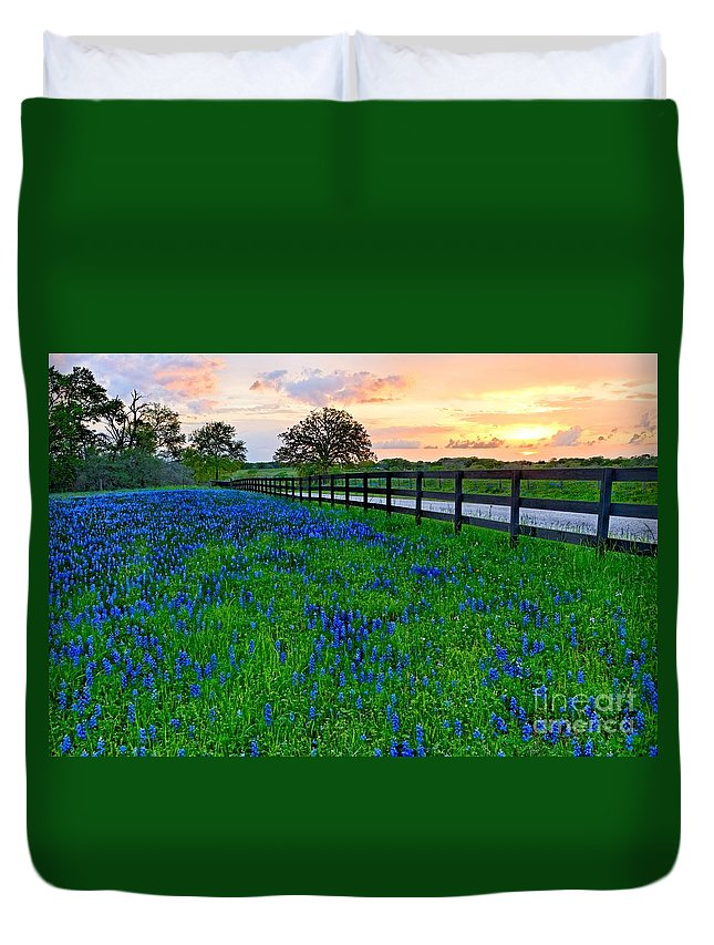 Bluebonnets Duvet Cover featuring the photograph Bluebonnet Fields Forever Brenham Texas by Silvio Ligutti