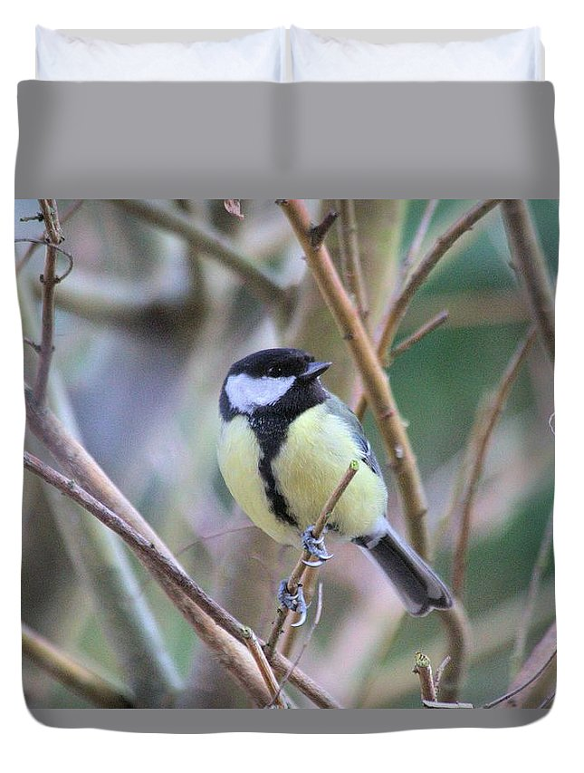 Bluetit Duvet Cover featuring the photograph Bluetit by Gordon Auld