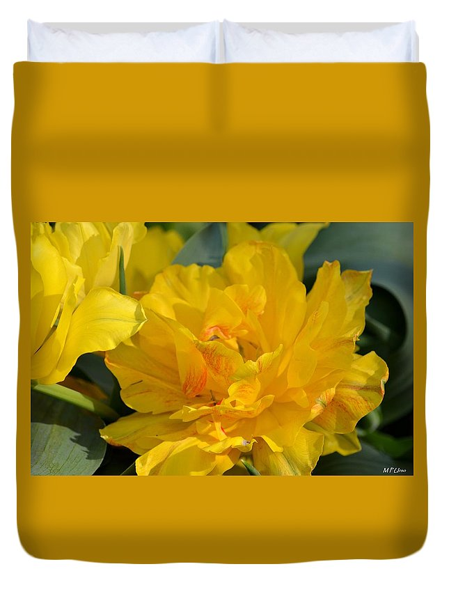 Blushing Yellow Duvet Cover featuring the photograph Blushing Yellow by Maria Urso