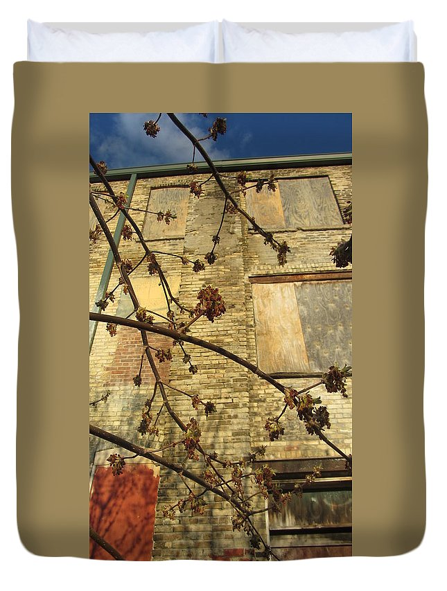 Urban Duvet Cover featuring the photograph Boarded Windows And Branches by Anita Burgermeister