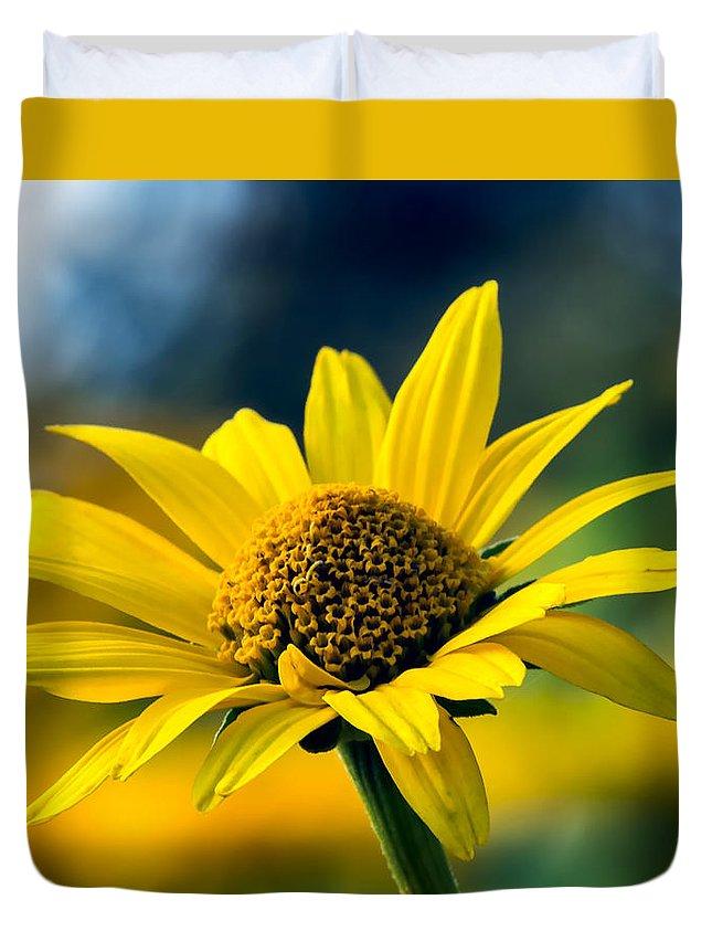 Summer Duvet Cover featuring the photograph Bokeh Beauty by Tomasz Dziubinski