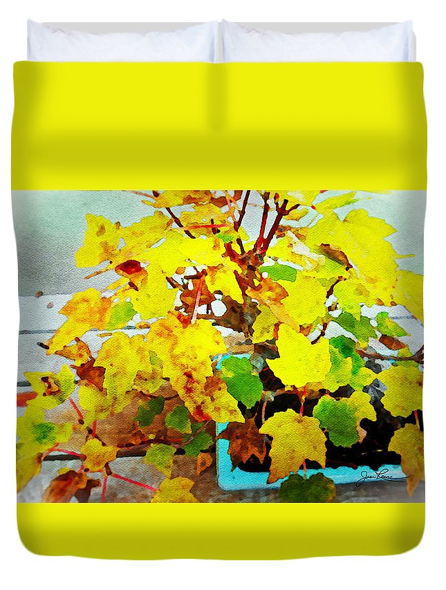 Bonsai Tree Duvet Cover featuring the painting Bonsai Tree With Yellow Leaves by Joan Reese