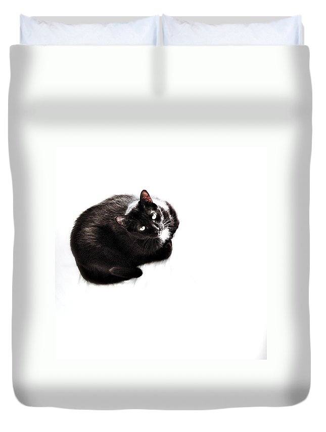 Cat Duvet Cover featuring the photograph Booboo by Natasha Marco