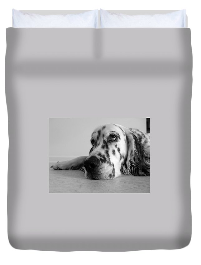 Adorable Duvet Cover featuring the photograph Bored by Alexey Stiop