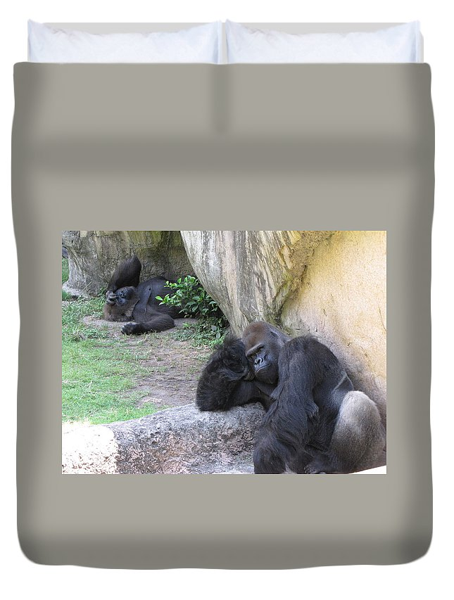Bored Duvet Cover featuring the photograph Bored by Beth Vincent