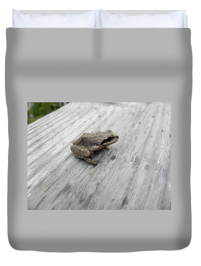 Tree Frog Duvet Cover featuring the photograph Botanical Gardens Tree Frog by Cheryl Hoyle