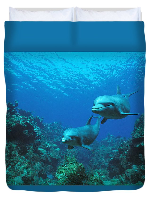 Animal Duvet Cover featuring the photograph Bottlenose Dolphins Over Reef by Konrad Wothe