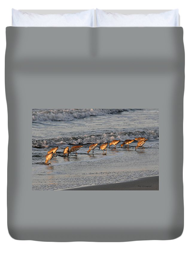 Beach Duvet Cover featuring the photograph Bottoms Up by Kay Lovingood