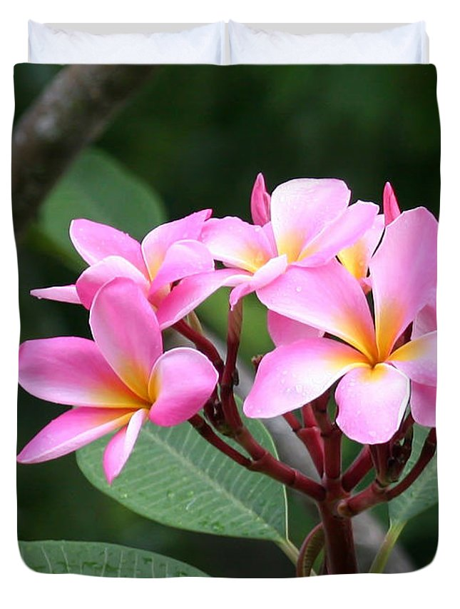 Amazing Duvet Cover featuring the photograph Bouquet Of Pink Plumeria by Sabrina L Ryan
