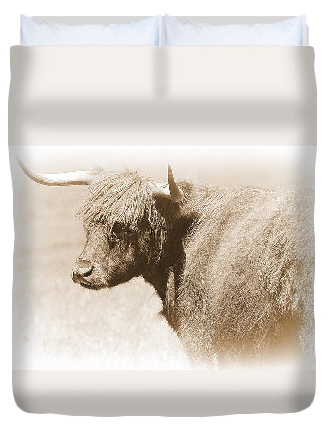 Bovine Duvet Cover featuring the photograph Bovine With Bangs by Toni Abdnour