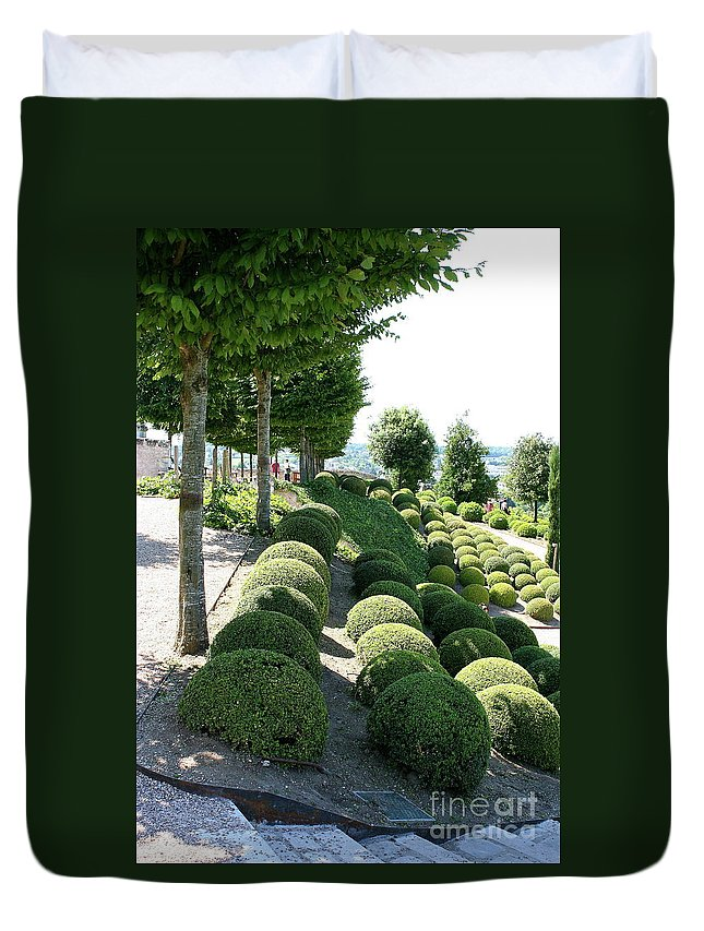 Boxwood Duvet Cover featuring the photograph Boxwood Garden Globes by Christiane Schulze Art And Photography
