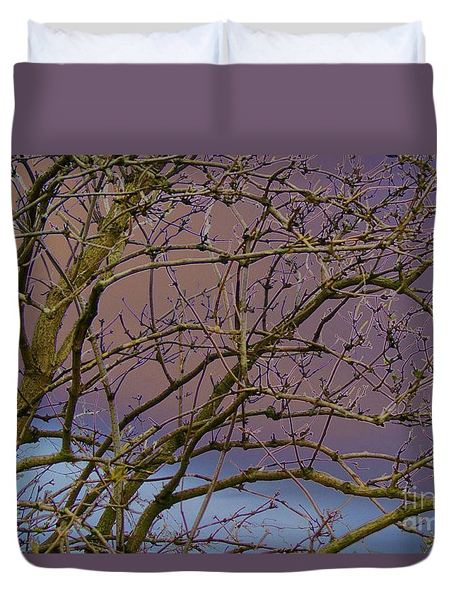 Branches Duvet Cover featuring the digital art Branches by Carol Lynch