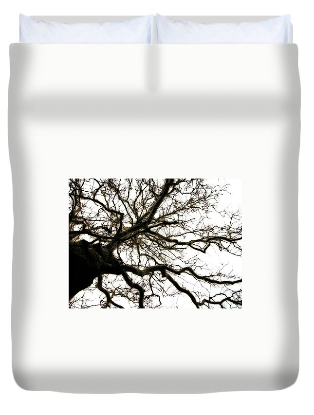 Branches Duvet Cover featuring the photograph Branches by Michelle Calkins