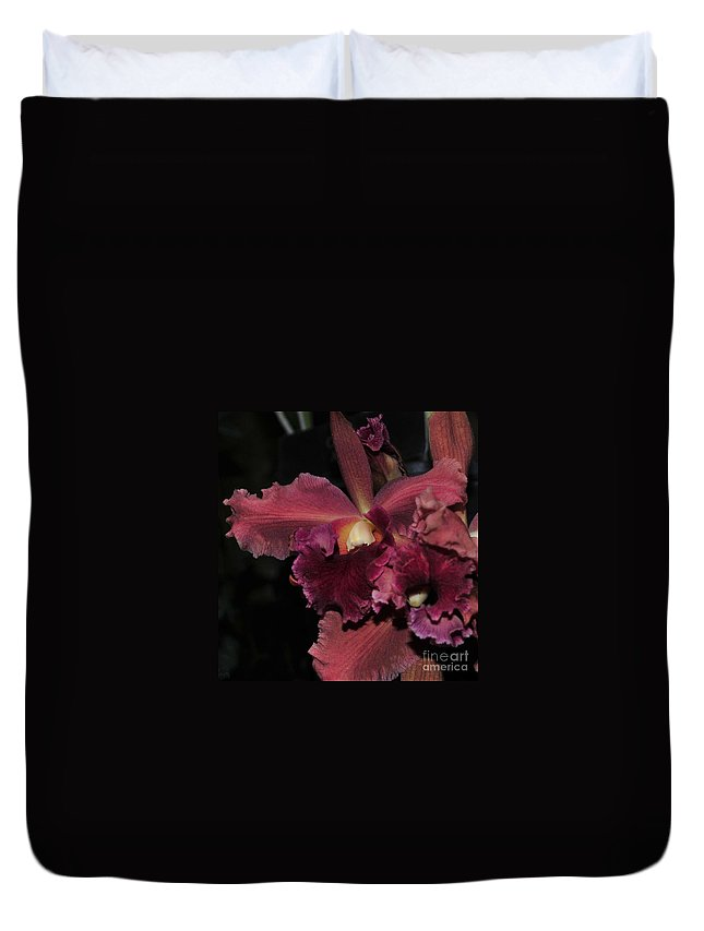Orchid Duvet Cover featuring the photograph Brassolaeliocattleya Helen Huntington Chevy Chase by Terri Winkler
