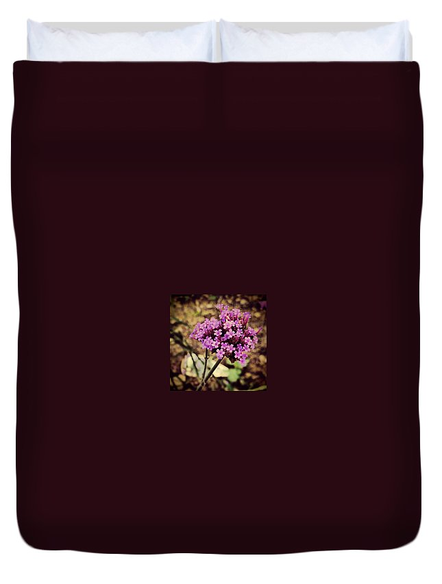 Flower Duvet Cover featuring the photograph Brazilian Verbena by Angela Rath