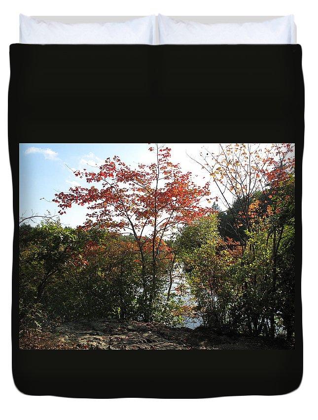 Foliage Duvet Cover featuring the photograph Break At Breakheart by Barbara McDevitt