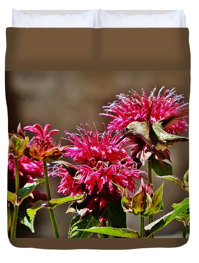Hummingbird Duvet Cover featuring the photograph Breakfast At The Bee Balm by VLee Watson