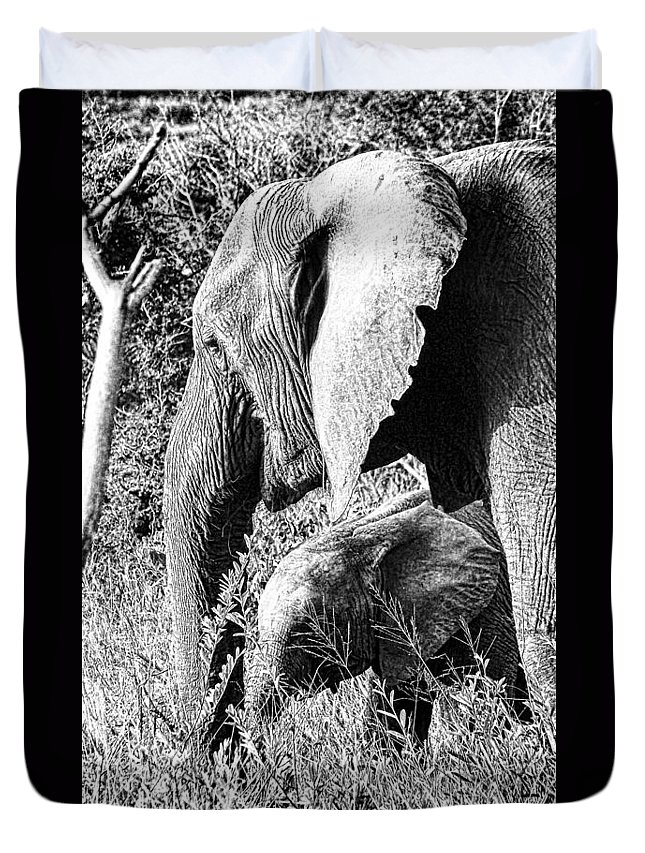 Elephant Bull Duvet Cover featuring the photograph Breakfast With Mother Black And White by Douglas Barnard