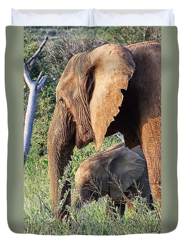 Elephant Bull Duvet Cover featuring the photograph Breakfast With Mother by Douglas Barnard