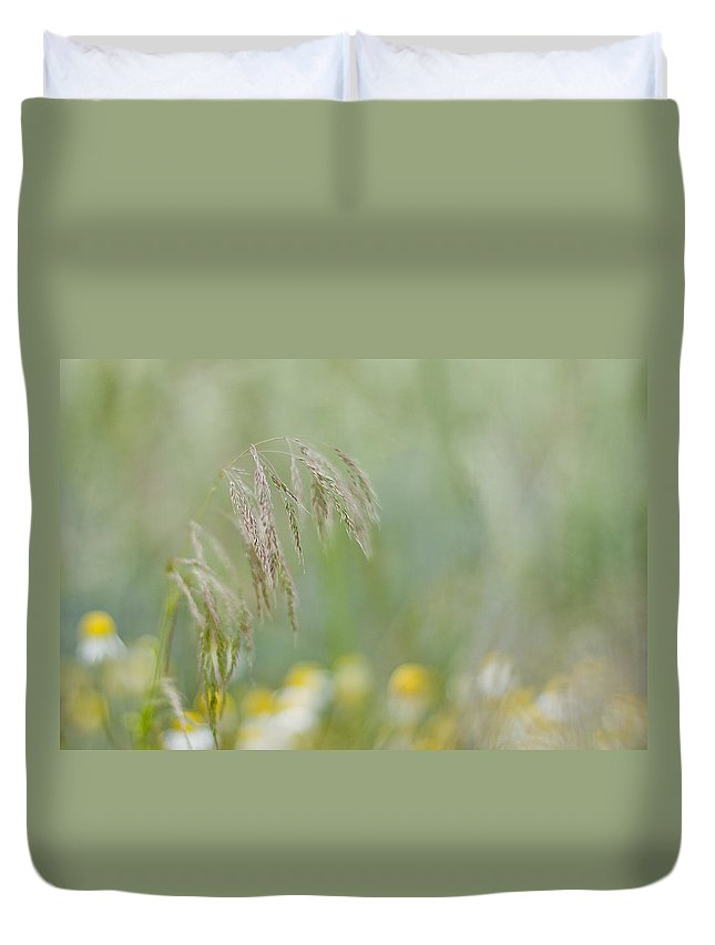 Camomile Duvet Cover featuring the photograph Breath Of Summer by Maria Ismanah Schulze-Vorberg