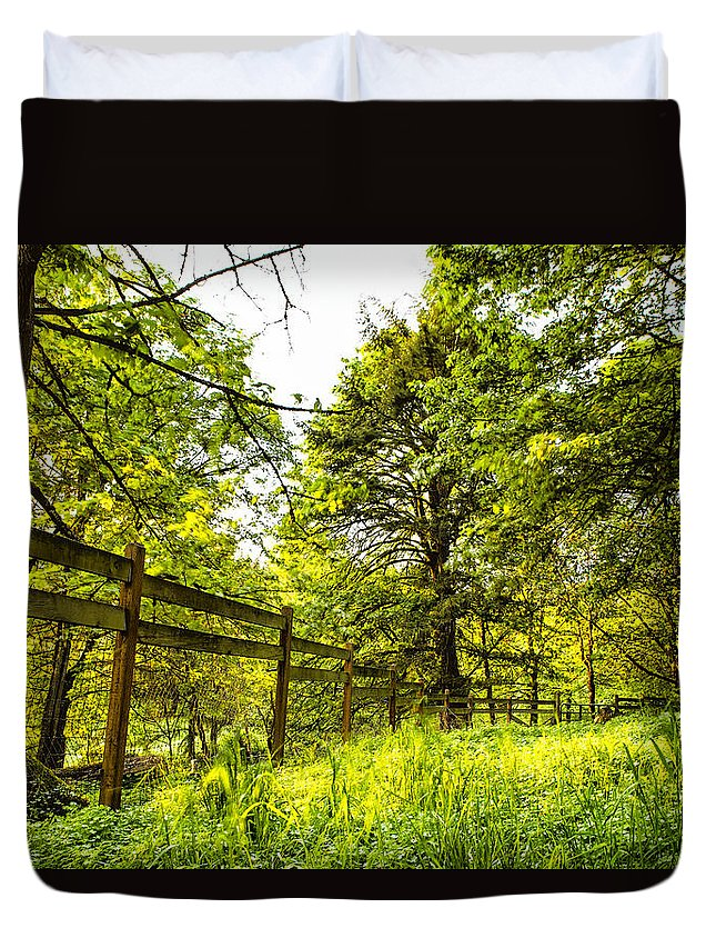 Trees Duvet Cover featuring the photograph Breezy Spring Afternoon by Belinda Greb