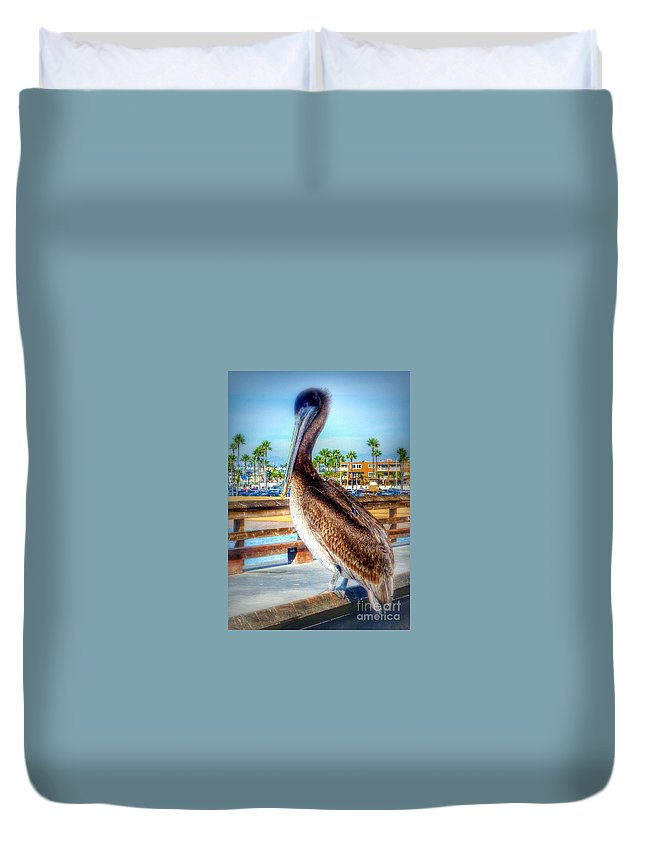 California Coastal Brown Pelican Duvet Cover featuring the photograph Brief Pelican Encounter by Susan Garren