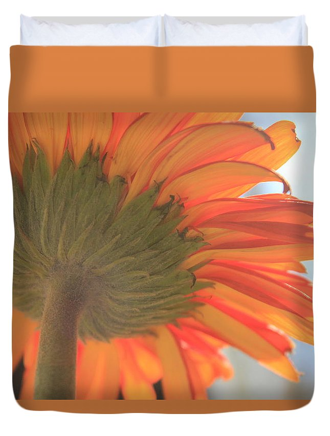 Gerber Daisy Duvet Cover featuring the photograph Bright And Sunny by Deborah Crew-Johnson