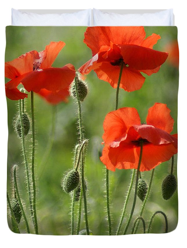 Poppies Duvet Cover featuring the photograph Bright Poppies 1 by Carol Lynch