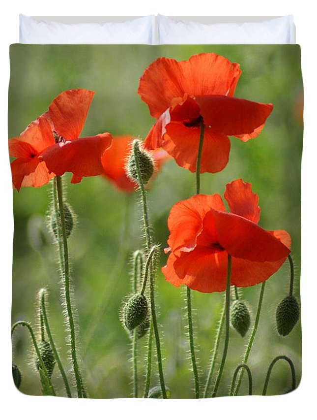 Poppies Duvet Cover featuring the photograph Bright Poppies 2 by Carol Lynch